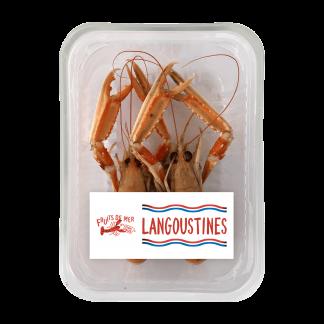 Langoustines